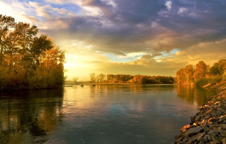 autumn-219972_960_720